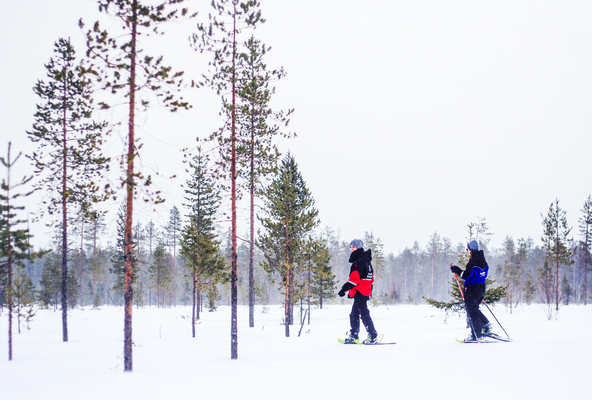 two people on a snowshoe trip in forest