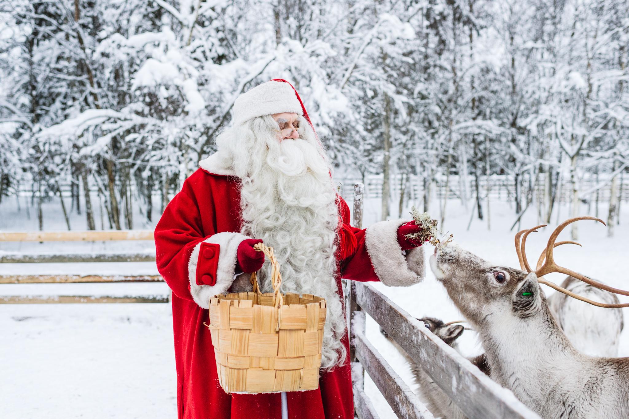Santa Claus feeding Reindeer