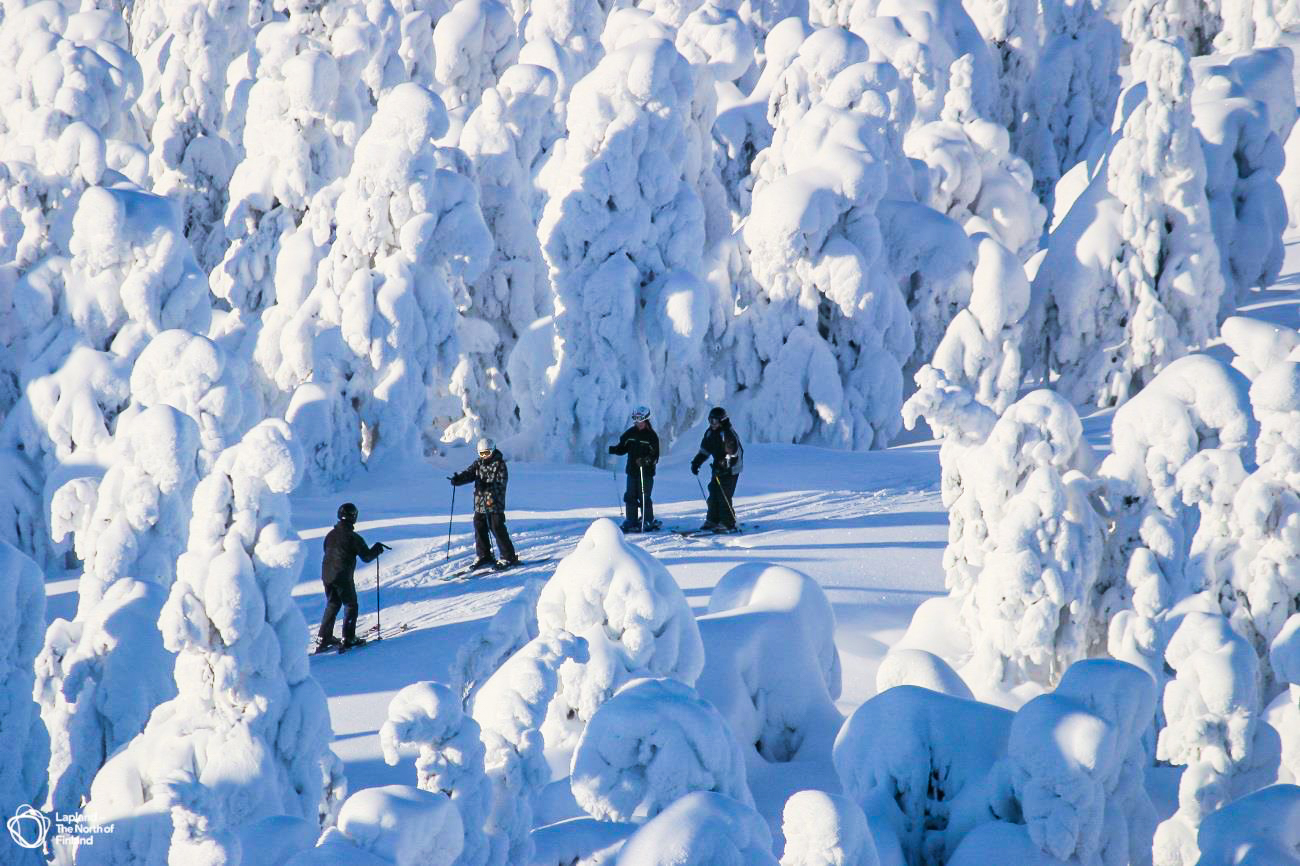 skiing trip in snowy forest
