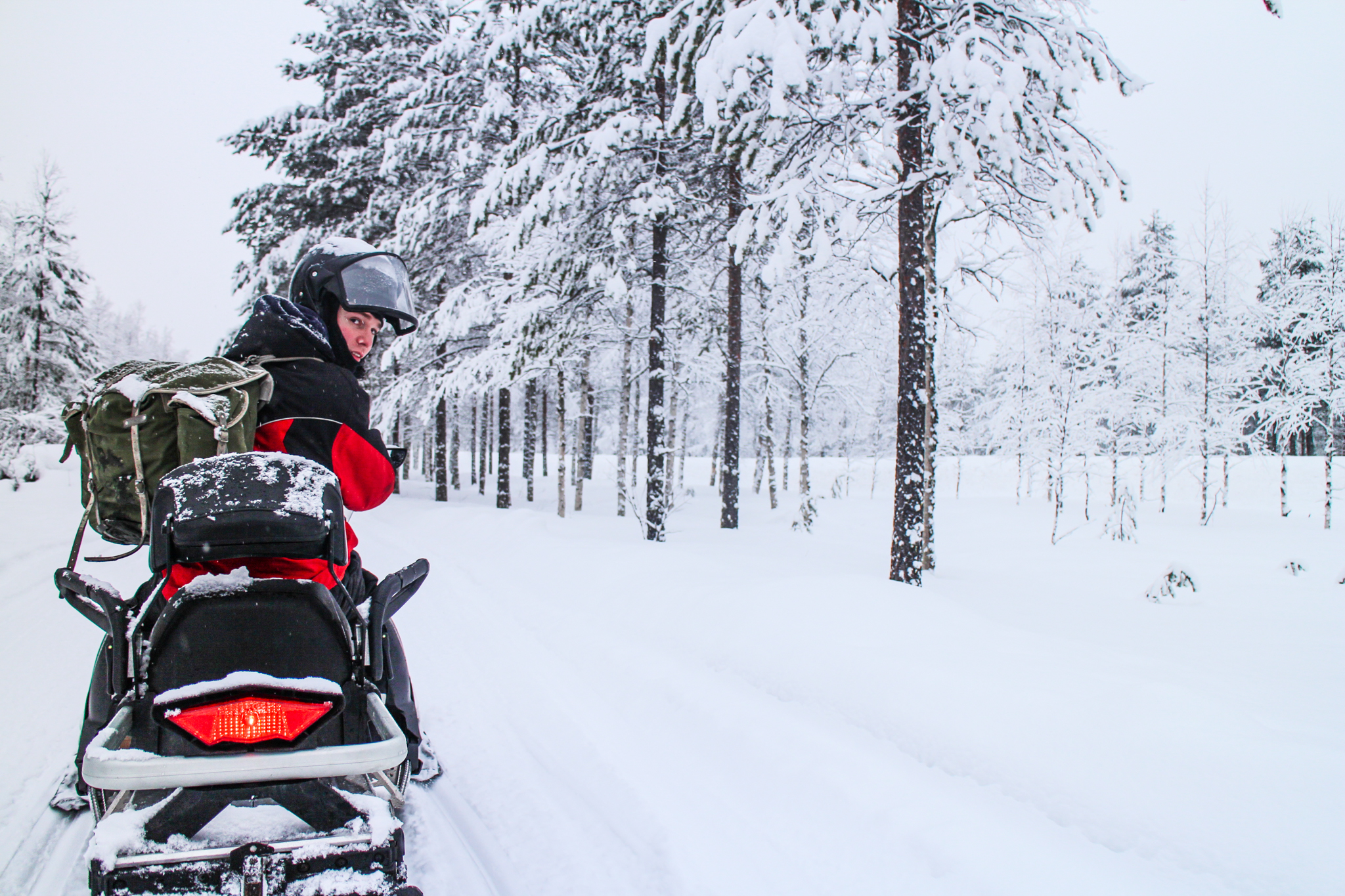 person on snowmobile in snowy forest